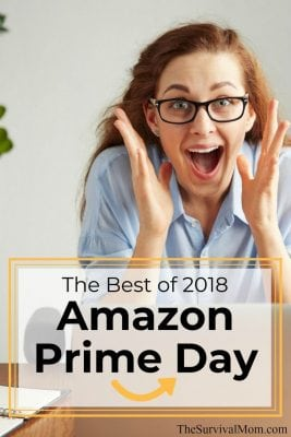The Best Of 2018 Amazon Prime Day