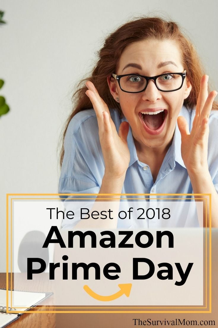 the best of 2018 amazon prime day survival mom. Black Bedroom Furniture Sets. Home Design Ideas