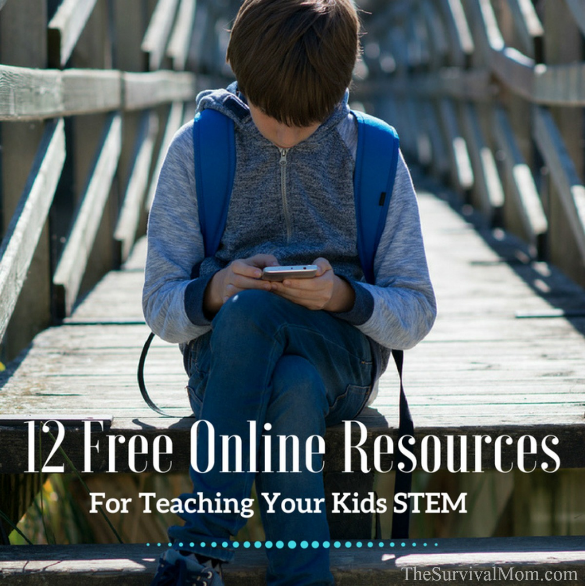 12 Free Online Resources For Teaching Your Kids STEM via The Survival Mom