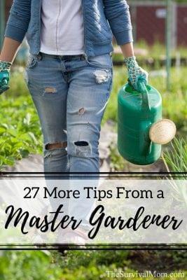tips from a master gardener