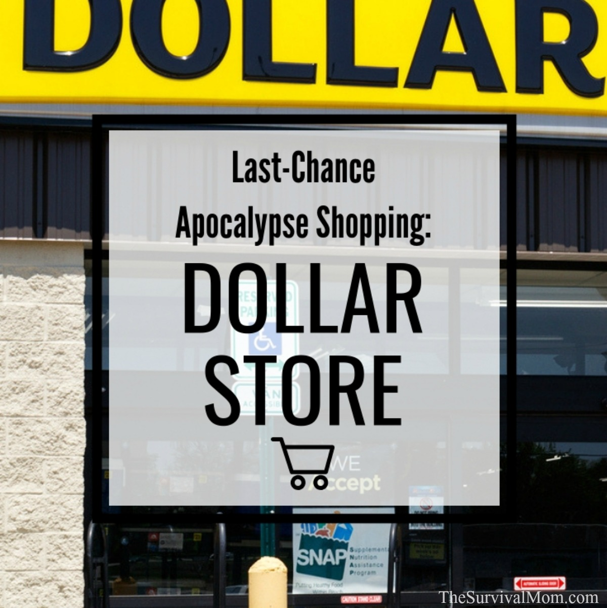 prepper dollar store, dollar store deals for preppers