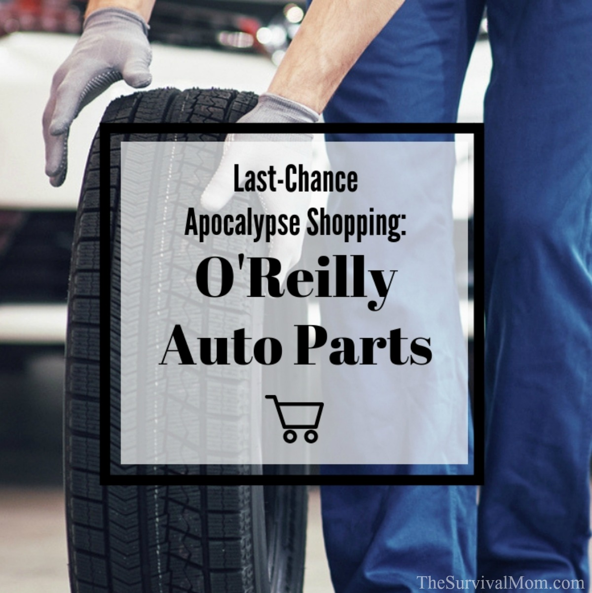 Orally Auto Part Near Me >> Last Chance Apocalypse Shopping O Reilly Auto Parts Survival Mom