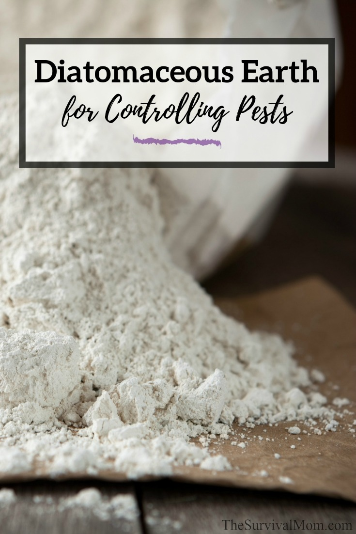 Diatomaceous Earth for Controlling Pests - Survival Mom