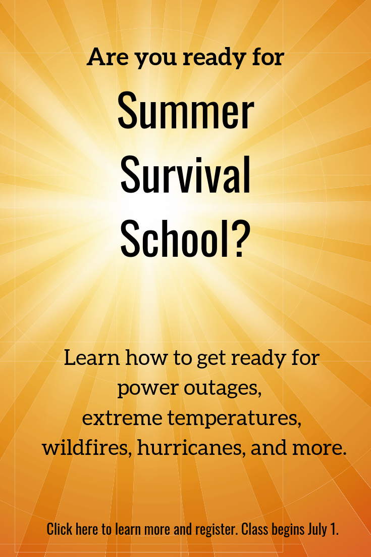 summer survival school