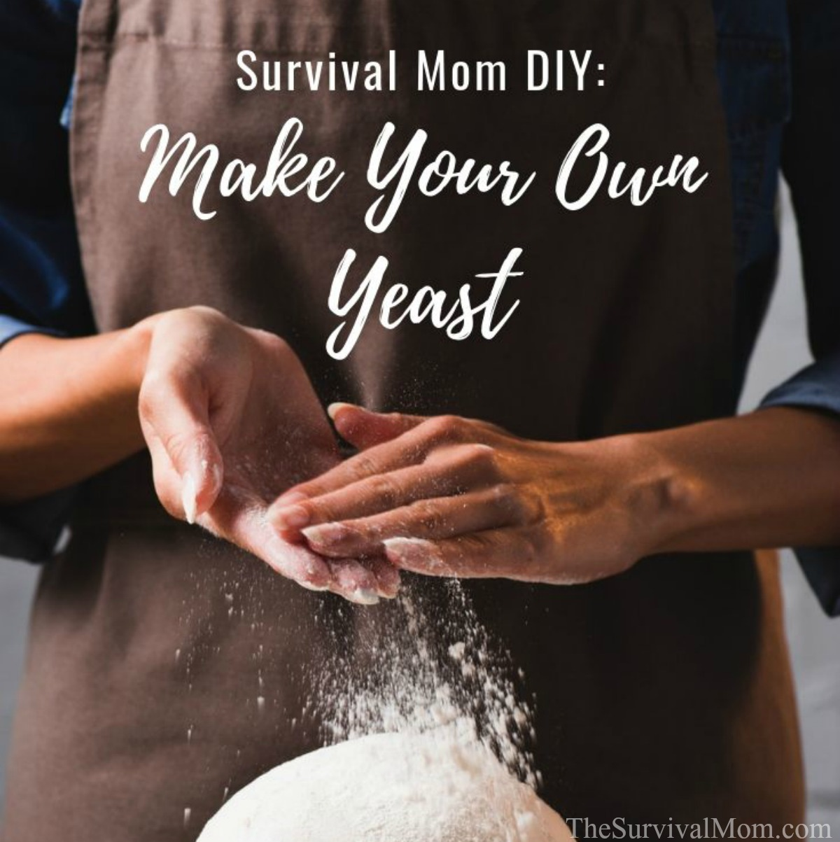 Survival Mom DIY Make Your Own Yeast via The Survival Mom