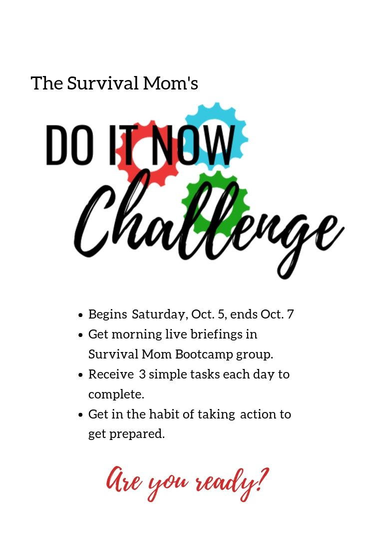 Join my DO IT NOW Challenge via The Survival Mom