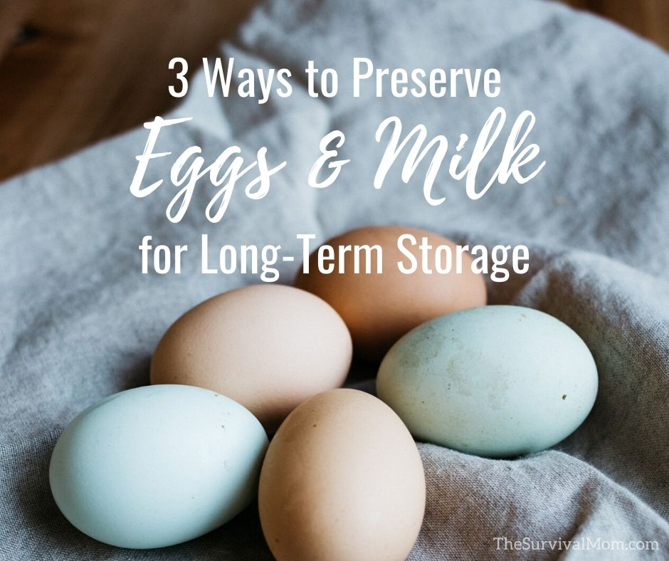 3 Ways to Preserve Eggs and Milk for Long-Term Storage via The Survival Mom