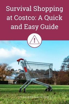 Image: shopping cart
